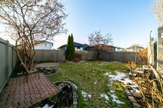 Photo 27: 17220 113B Street in Edmonton: Zone 27 House for sale : MLS®# E4180708