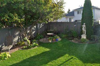 Photo 34: 17220 113B Street in Edmonton: Zone 27 House for sale : MLS®# E4180708