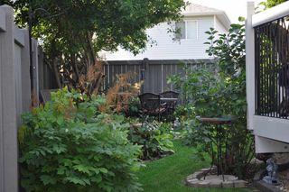 Photo 32: 17220 113B Street in Edmonton: Zone 27 House for sale : MLS®# E4180708
