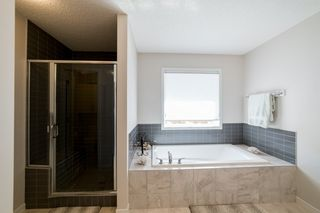 Photo 31: 1254 PEREGRINE Terrace in Edmonton: Zone 59 House for sale : MLS®# E4194822