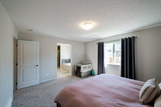 Photo 25: 1254 PEREGRINE Terrace in Edmonton: Zone 59 House for sale : MLS®# E4194822