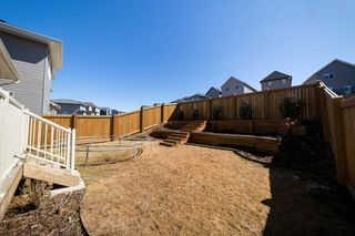Photo 34: 1254 PEREGRINE Terrace in Edmonton: Zone 59 House for sale : MLS®# E4194822