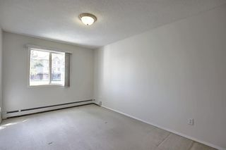 Photo 18: 101 7724 BOWNESS Road NW in Calgary: Bowness Apartment for sale : MLS®# A1014988