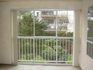 Photo 11: 206 15130 Roper Avenue in The Carrington: White Rock Home for sale ()  : MLS®# F2627525