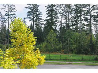 "Photo 9: 3376 PLATEAU BV in Coquitlam: Westwood Plateau House for sale in ""WESTWOOD PLATEAU"" : MLS®# V917330"