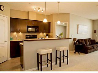 Photo 4: 211 1 Crystal Green Lane: Okotoks Condo for sale : MLS®# C3612012