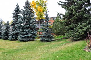 Photo 14: 376 1620 8 Avenue NW in Calgary: Briar Hill Condo for sale : MLS®# C3639953