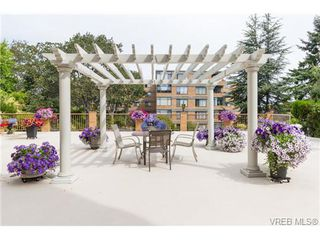 Photo 16: 201 2930 Cook Street in VICTORIA: Vi Mayfair Condo Apartment for sale (Victoria)  : MLS®# 354113