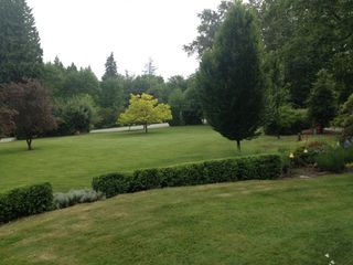 Photo 19: 26749 98 Avenue in Maple Ridge: Thornhill House for sale : MLS®# R2039037
