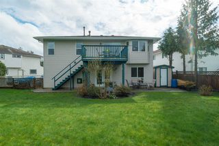 """Photo 5: 21555 51B Avenue in Langley: Murrayville House for sale in """"Murrayville"""" : MLS®# R2151102"""