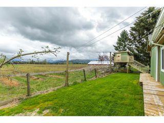 Photo 17: 28995 MCTAVISH Road in Abbotsford: Bradner House for sale : MLS®# R2158897