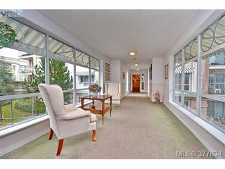 Photo 14: 102 3133 Tillicum Rd in VICTORIA: SW Tillicum Condo for sale (Saanich West)  : MLS®# 758154