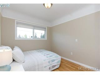 Photo 11: 580 OConnell Pl in VICTORIA: SW Glanford House for sale (Saanich West)  : MLS®# 759348