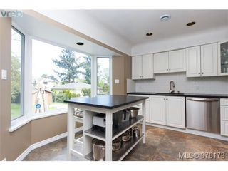 Photo 6: 580 OConnell Pl in VICTORIA: SW Glanford Single Family Detached for sale (Saanich West)  : MLS®# 759348