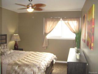 Photo 8: 148 Walsall Street in Winnipeg: Tyndall Park Residential for sale (4J)  : MLS®# 1715538