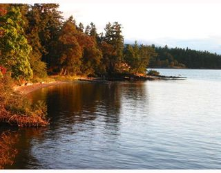 Photo 6: 20 FOSTER POINT Road in Thetis Island: Beach Home for sale : MLS®# V766772