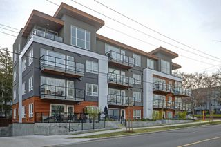 Photo 22: 301 300 Michigan Street in VICTORIA: Vi James Bay Condo Apartment for sale (Victoria)  : MLS®# 384016