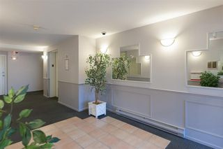 "Photo 2: 211 295 SCHOOLHOUSE Street in Coquitlam: Maillardville Condo for sale in ""Chateau Royale"" : MLS®# R2237946"