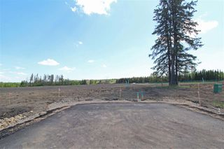 Main Photo: 7 -53217 RR 263: Rural Parkland County Rural Land/Vacant Lot for sale : MLS®# E4114106