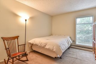 "Photo 17: 105 225 MOWAT Street in New Westminster: Uptown NW Condo for sale in ""THE WINDSOR"" : MLS®# R2295309"