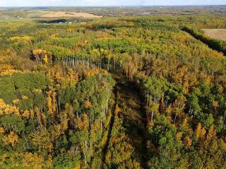 Photo 9: 0 RGE RD 15 TWP ROAD 552: Rural Lac Ste. Anne County Rural Land/Vacant Lot for sale : MLS®# E4137401
