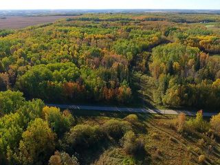 Photo 11: 0 RGE RD 15 TWP ROAD 552: Rural Lac Ste. Anne County Rural Land/Vacant Lot for sale : MLS®# E4137401