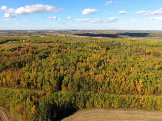 Photo 4: 0 RGE RD 15 TWP ROAD 552: Rural Lac Ste. Anne County Rural Land/Vacant Lot for sale : MLS®# E4137401