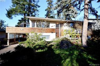Main Photo: 2854 Adelaide Avenue in VICTORIA: SW Gorge Single Family Detached for sale (Saanich West)  : MLS®# 404733