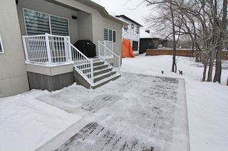 Photo 23: 393 Scotswood Drive South in Winnipeg: Residential for sale (1G)  : MLS®# 1902769