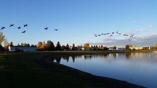 Photo 28: 2724 Lakeside Drive in Edmonton: Zone 59 Mobile for sale : MLS®# E4146689