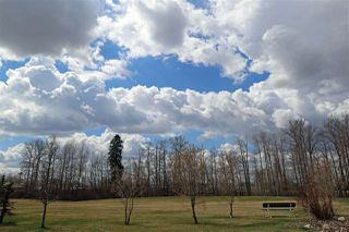 Photo 30: 2724 Lakeside Drive in Edmonton: Zone 59 Mobile for sale : MLS®# E4146689
