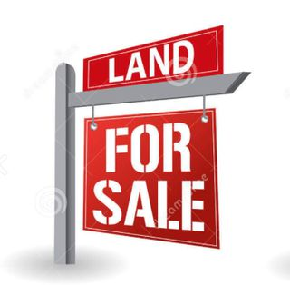 Photo 4: #625 AND RRD 233: Rural Leduc County Rural Land/Vacant Lot for sale : MLS®# E4151003