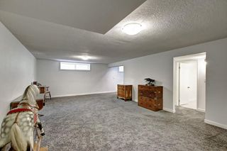 Photo 31: 316 SILVER HILL WY NW in Calgary: Silver Springs House for sale : MLS®# C4265263