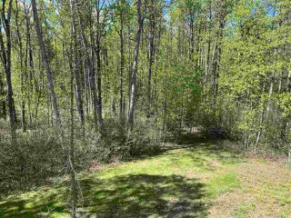 Photo 41: 461050 Range Road 15: Rural Wetaskiwin County House for sale : MLS®# E4186158