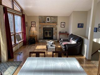 Photo 23: 461050 Range Road 15: Rural Wetaskiwin County House for sale : MLS®# E4186158
