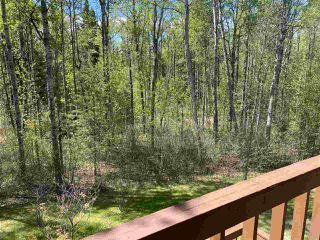 Photo 38: 461050 Range Road 15: Rural Wetaskiwin County House for sale : MLS®# E4186158