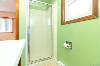 Photo 23: 3901 Lexington Ave in VICTORIA: SE Arbutus House for sale (Saanich East)  : MLS®# 835431