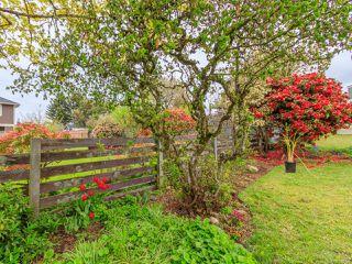 Photo 41: 743 Cadogan St in NANAIMO: Na Central Nanaimo House for sale (Nanaimo)  : MLS®# 840008