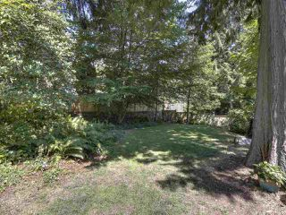 Photo 38: 3751 ROBLIN Place in North Vancouver: Princess Park House for sale : MLS®# R2485057