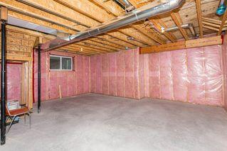 Photo 39: 18020 78 Street in Edmonton: Zone 28 House for sale : MLS®# E4217936