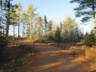 Photo 7: Lot 1P Highway 3 in Summerville: Vacant Land for sale : MLS®# 201925071