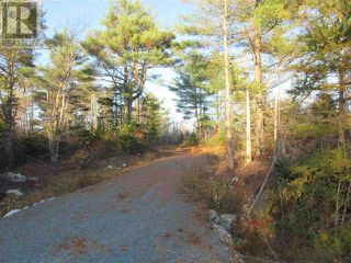 Photo 9: Lot 1P Highway 3 in Summerville: Vacant Land for sale : MLS®# 201925071