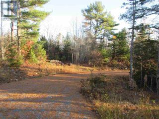 Photo 4: Lot 1P Highway 3 in Summerville: Vacant Land for sale : MLS®# 201925071
