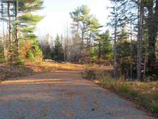 Photo 6: Lot 1P Highway 3 in Summerville: Vacant Land for sale : MLS®# 201925071