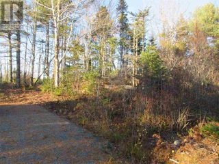 Photo 5: Lot 1P Highway 3 in Summerville: Vacant Land for sale : MLS®# 201925071
