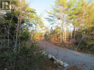 Photo 10: Lot 1P Highway 3 in Summerville: Vacant Land for sale : MLS®# 201925071
