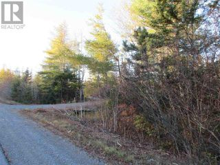 Photo 8: Lot 1P Highway 3 in Summerville: Vacant Land for sale : MLS®# 201925071
