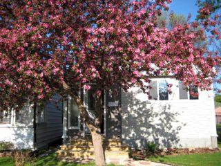 Photo 2: 301 INGLEWOOD Street in WINNIPEG: St James Residential for sale (West Winnipeg)  : MLS®# 1107273