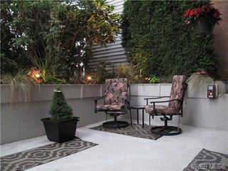Photo 17: 111 1560 Hillside Ave in VICTORIA: Vi Oaklands Condo Apartment for sale (Victoria)  : MLS®# 682375