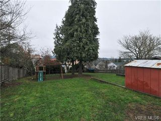 Photo 18: 3166 Donald St in VICTORIA: SW Tillicum House for sale (Saanich West)  : MLS®# 689743